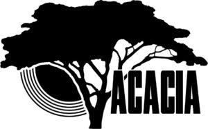 etiyopya-acacia