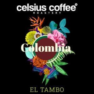 Kolombiya El Tambo Filtre Kahve