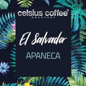 El Salvador Apaneca Filtre Kahve