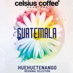 Guatemala Huehuetenango Regional Selection