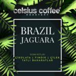 Brezilya Jaguara | Espresso