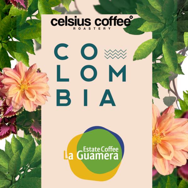 kolombiya-finca-la-guamera