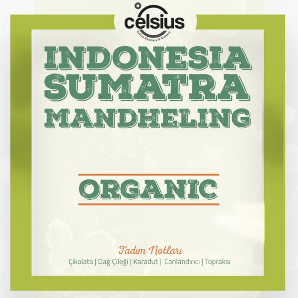 Endonezya Sumatra Mandheling Organik Kahve