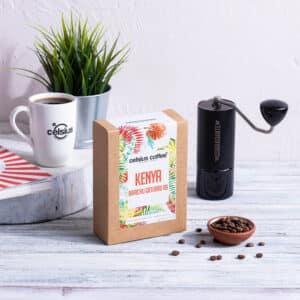 Kenya Barichu Gaturiri AB Filtre Kahve