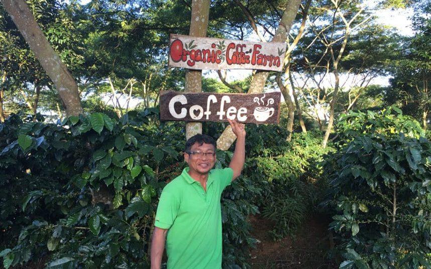 organik-kahve-nedir
