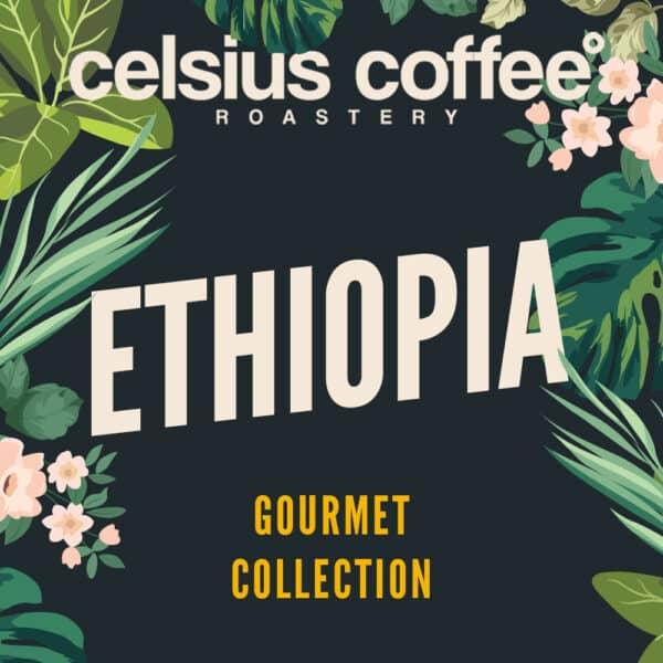 Ethiopia-Gourmet-Collection-WEB