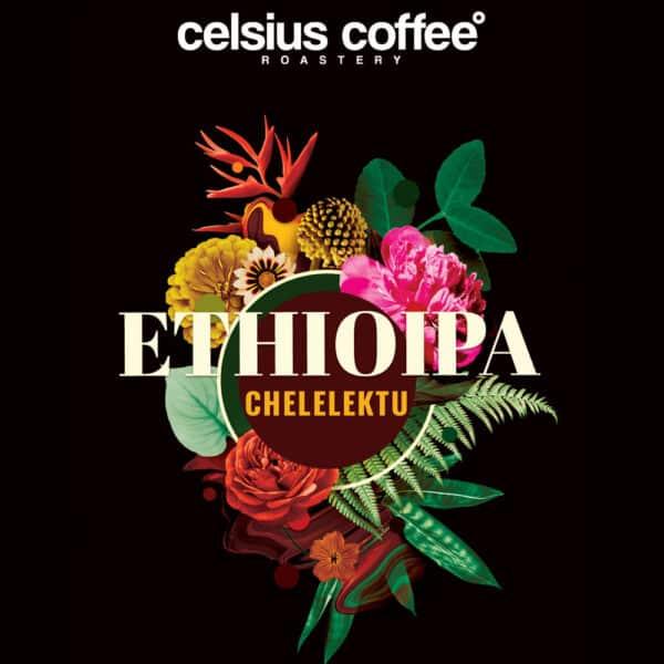 etiyopya chelelektu natural filtre kahve