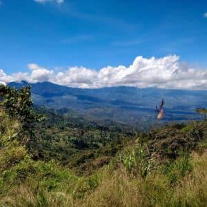 Papua Yeni Gine Simbu Filtre Kahve