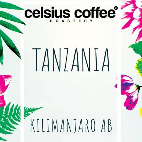 Tanzanya Kilimanjaro AB Filtre Kahve