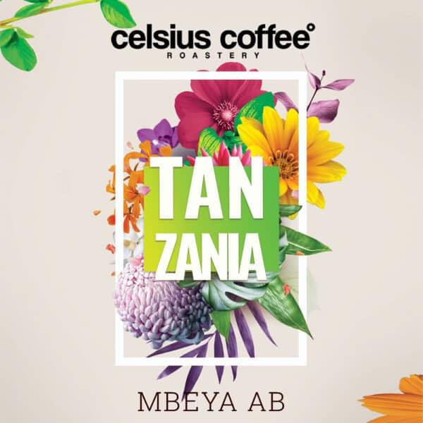 Tanzanya Mbeya AB Filtre Kahve
