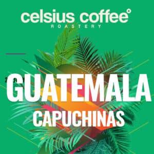 Guatemala Capuchinas Filtre Kahve