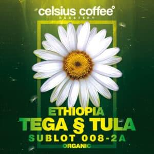 Etiyopya Tega & Tula Sublot 008-2A Organik Filtre Kahve