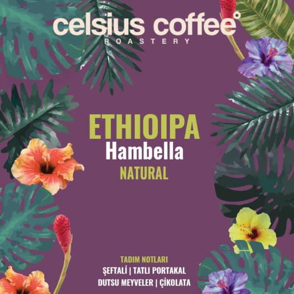 Etiyopya Hambella Natural Filtre Kahve