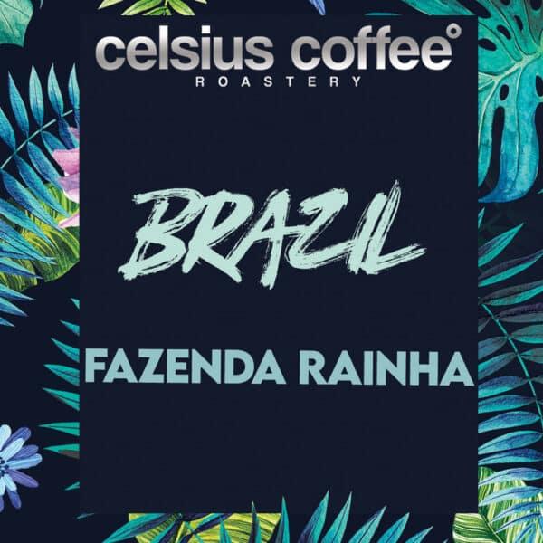 Brezilya Fazenda Rainha Natural Filtre Kahve