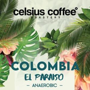Colombia El Paraiso Anaerobic Filtre Kahve