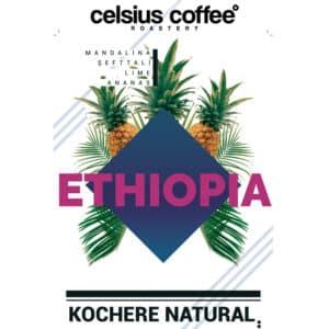Etiyopya Kochere Natural Filtre Kahve