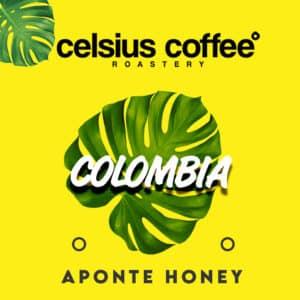 Kolombiya Aponte Honey Filtre Kahve